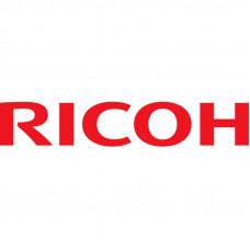Девелопер Ricoh 1015/1018/1113 type19 (345гр)